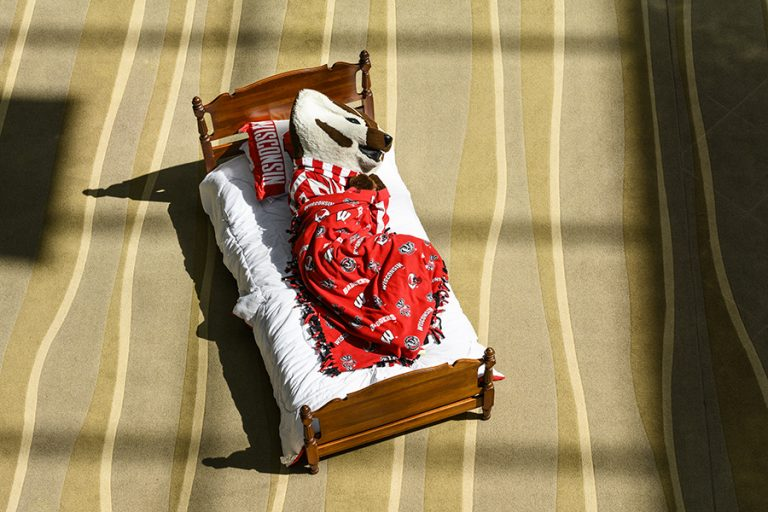 An image of Bucky Badger sleeping in a bed, wrapped up in a red blanket